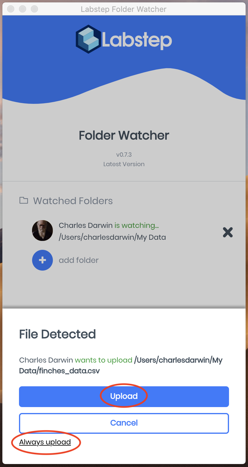 A screenshot showing what will be prompted when a file is detected